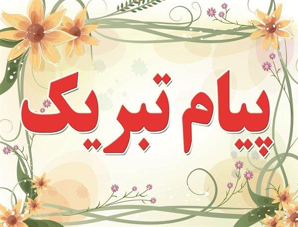 پیام تبریک عضو شورای مرکزی حزب تدبیر و توسعه ایران اسلامی به مناسبت روز شوراها